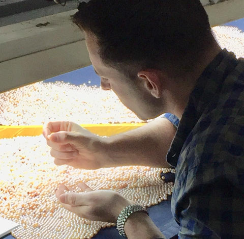 Selecting Pearls at the Harvest