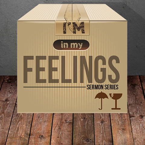 In My Feelings CD