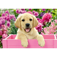 Ravensburger 2 x 24 Piece Puzzle Me and my Pal 05029 canada ontario children kid jigsaw puppy flowers pink golden retriever