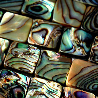 Abalone Square 10mm