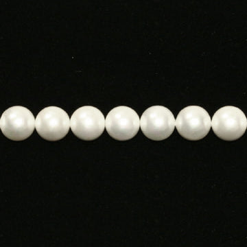 Shell Pearl Round Beads - White