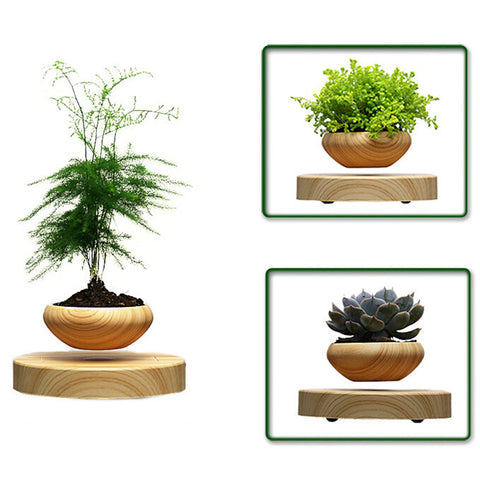 Magnetic Levitation Air Bonsai Wooden Base and Pot