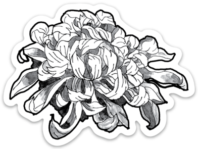 Chrysanthemum Vinyl Sticker