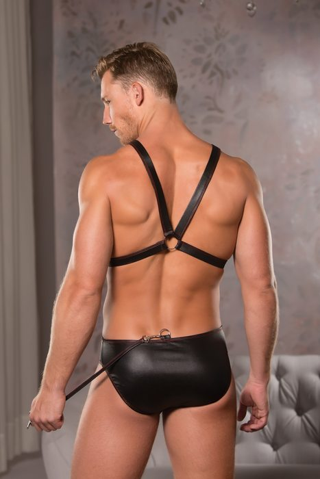 Allure Wet Look Harness & Brief Small