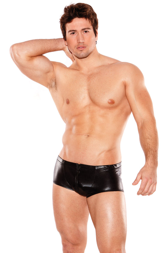 Zeus Wet Look Shorts One Size