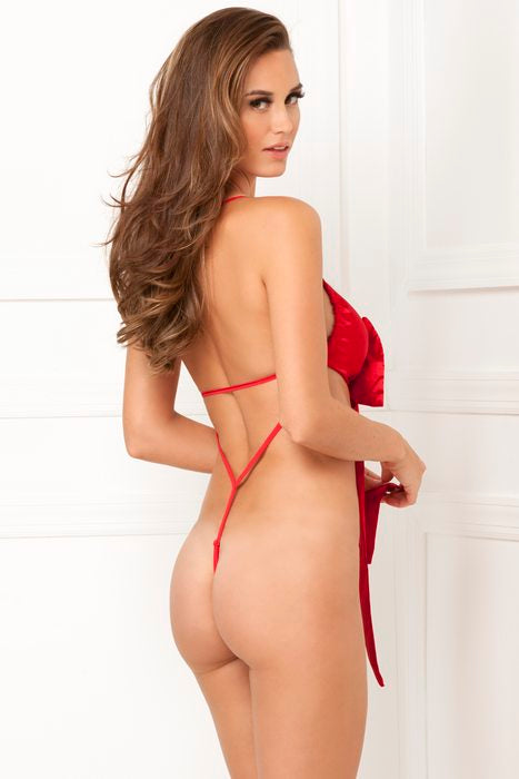 Satin Bow Teddy Red ML