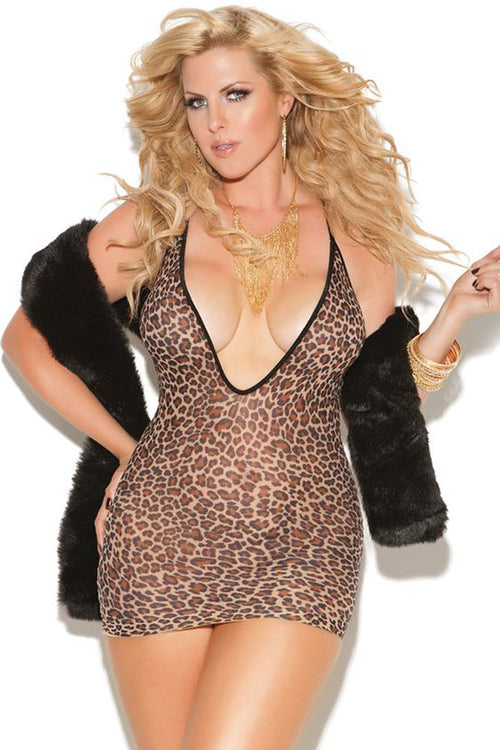 Sheer Leopard Mini Dress