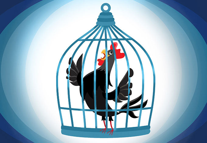The cock needs up your caged to be think, that