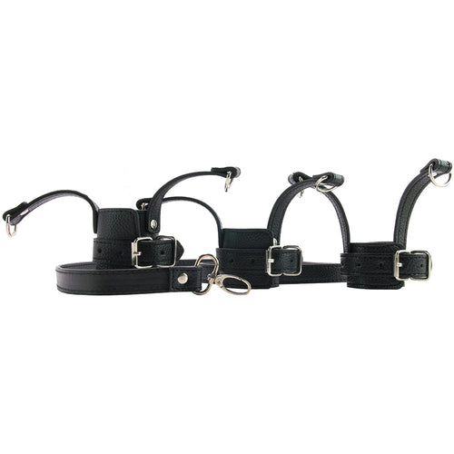 Mistress Ball Stretcher Trainer Set with Leash