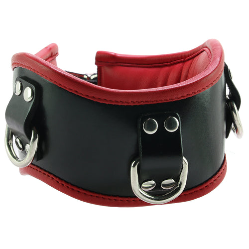 Leather Posture Collar with 3 D-Rings