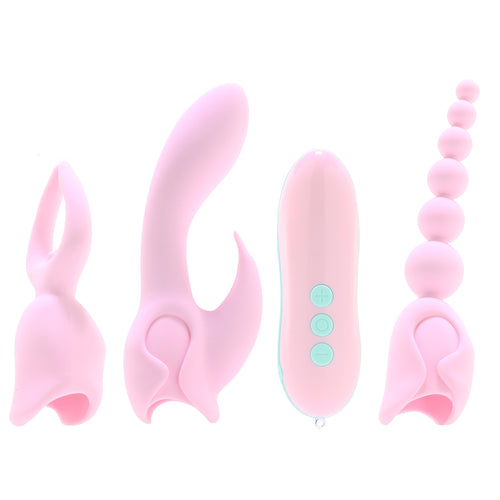 Pink Elite Collection Ultimate Orgasm Kit