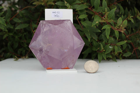 Polished Amethyst Hexagon