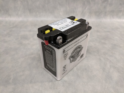 Original Equipment Kickstart 12V Battery