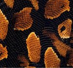 Abstract Hydrographics Film - Gold Snake, Hydrographics film - Dipology Hydrographics