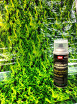 GREEN FLAMES 3 Meter Pro Kit with Aerosol Activator, Hydrographics film - Dipology Hydrographics