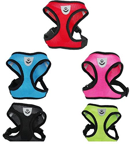Breathable Mesh Dog Vest Harness with Dog Leash