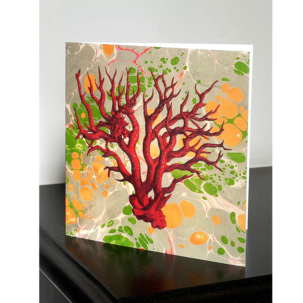 Pack of 4 Marbled Coral Greetings Cards