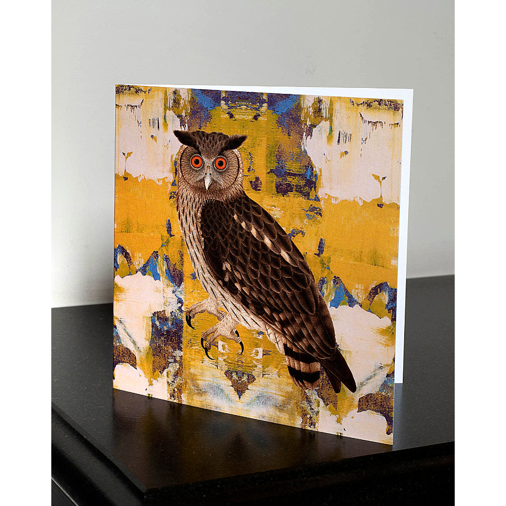 Pack of 4 Eagle Owl Greetings Cards