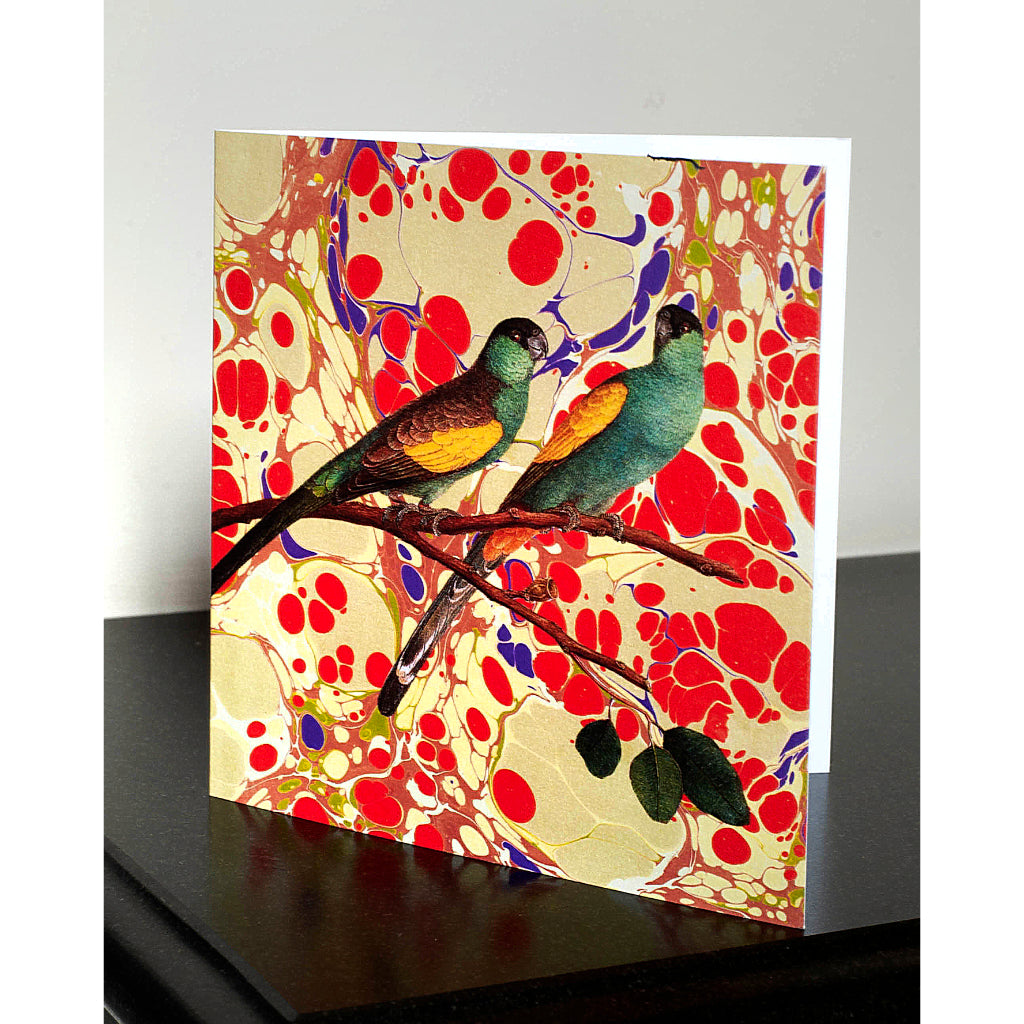 Pack of 4 Marbled Love Birds Greetings Cards