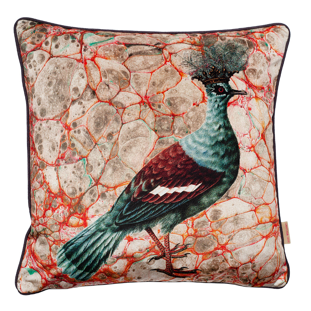 Grigia Crowned Pigeon Velvet Square Cushion