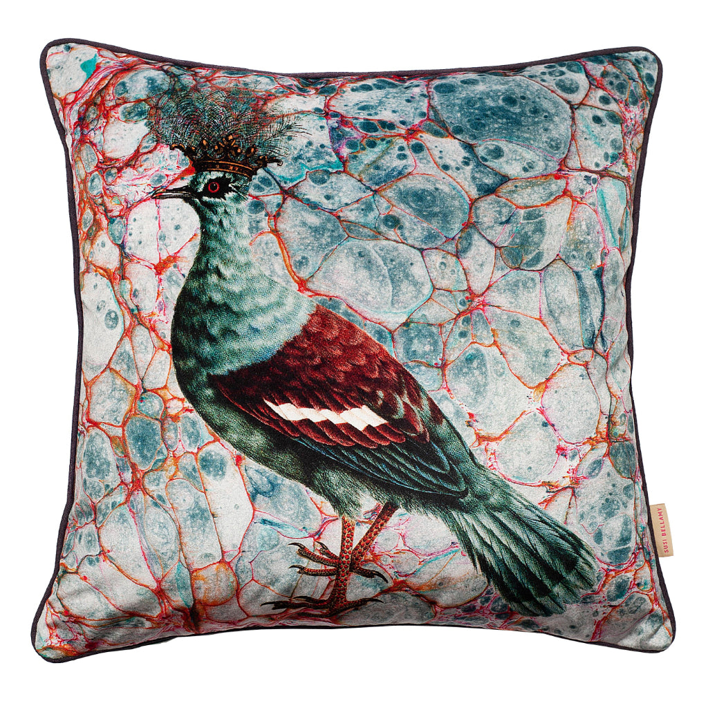Blu Crowned Pigeon Velvet Square Cushion