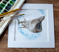 "Basking Shark - 8"" Mounted Watercolour Diving Print"
