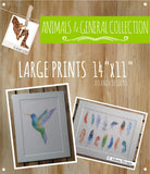 "ANIMALS, BALLOONS & GENERAL - Large 11x14"" Watercolour Prints"