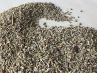 Dried Whole Anise Seed, Pimpinella anisum, For Sale from Schmerbals Herbals