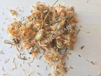 Dried Whole Arnica Flower and Stem, Heterotheca inuloides, For Sale from Schmerbals Herbals