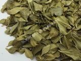 Dried Organic Buchu Leaf, Agathosma betulina, for Sale from Schmerbals Herbals