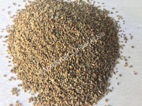 Dried Celery Seed, Apium graveolens, for Sale from Schmerbals Herbals