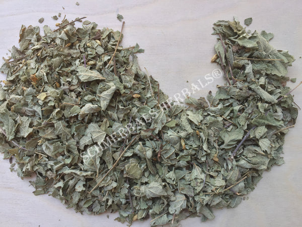 Dried Mexican Dream Herb Leaf, Calea Zacatechichi, for Sale from Schmerbals Herbals