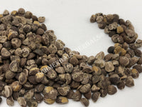 Dried Untreated Fresh Elephant Creeper, Argyreia nervosa, Hawaiian Baby Woodrose Seeds, for Sale from Schmerbals Herbals