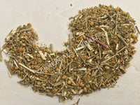 Dried Feverfew Herb, Tanacetum parthenium, for Sale from Schmerbals Herbals