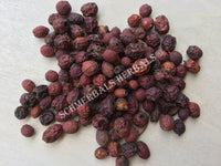 Dried Organic Hawthorn Berry, Crataegus monogyna, for Sale from Schmerbals Herbals