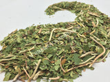 Dried Wild-Crafted Pipsissewa Herb, Chimaphila umbellata, for Sale from Schmerbals Herbals
