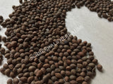 Dried Viable Untreated Rivea Corymbosa Seeds, for Sale from Schmerbals Herbals