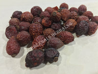 Dried Rose Hips Organic Whole Berry, Rosa canina, for Sale from Schmerbals Herbals
