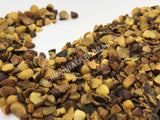 Dried Organic, Chopped, Saw Palmetto Berries, Serenoa repens, for Sale from Schmerbals Herbals