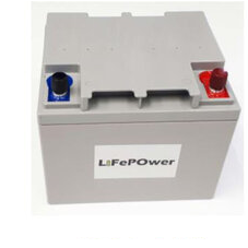 Lifepo4 Lithium 24V 20Ah Battery