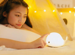 Cute Dolphin Multicolor Night Light