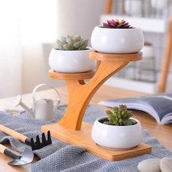 Contemporary Bamboo Plant Holder with Ceramic Planters - Nazamida