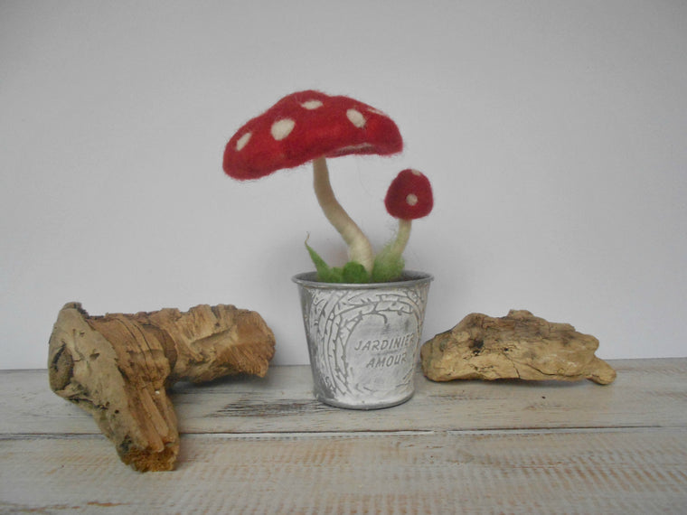 Needle felted Mushrooms, Handmade mushroom, Mushroom decoration