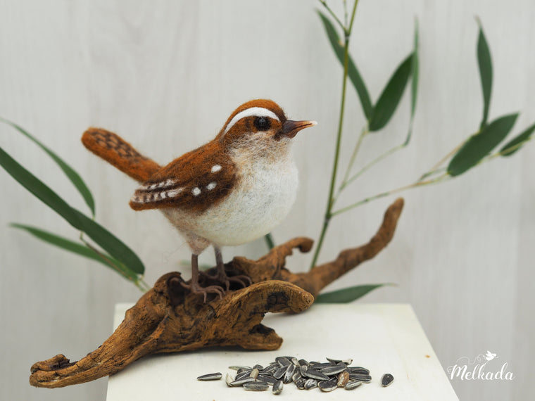 Needle felted Wren - Felted bird - Felted Carolina wren - Faux taxidermy bird