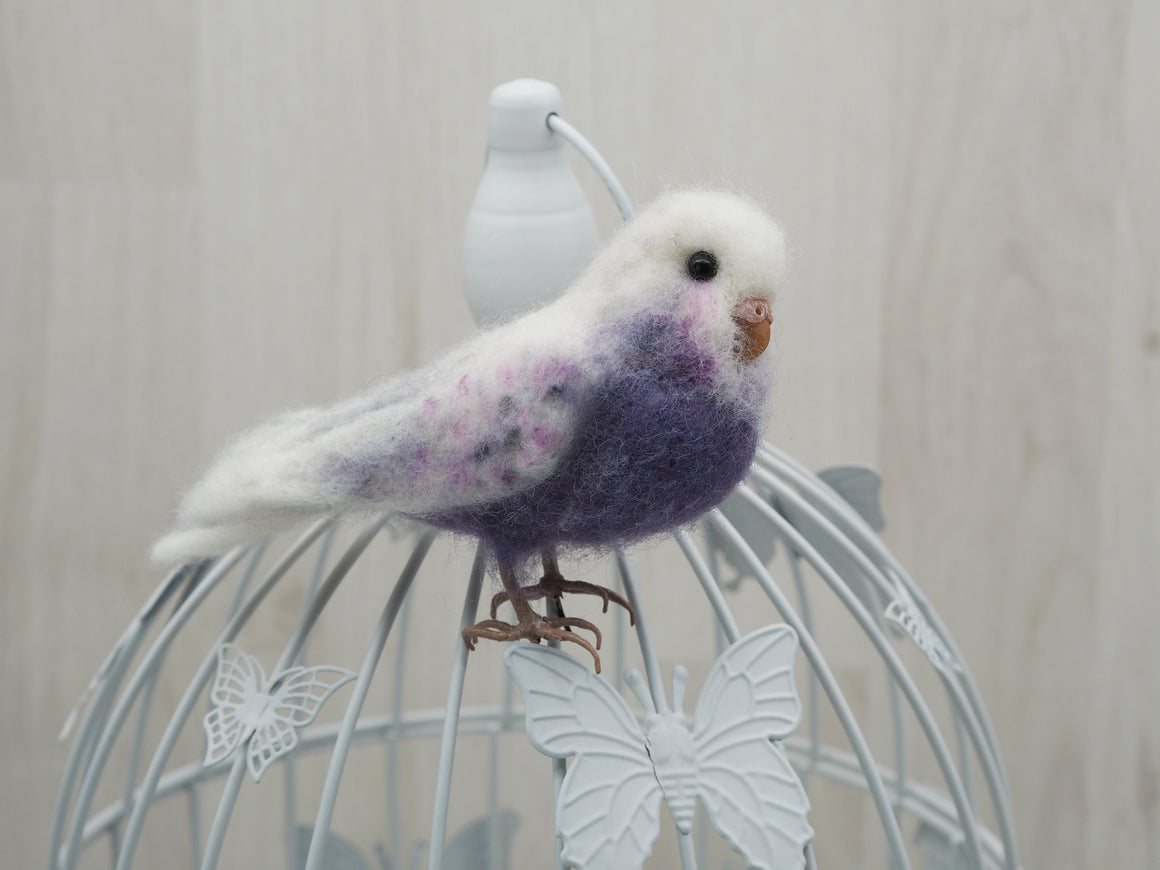 Needle felted budgie, Faux taxidermy felt parakeet