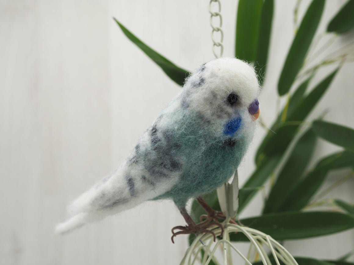 Needle felted  green budgie, Faux taxidermy felt parakeet