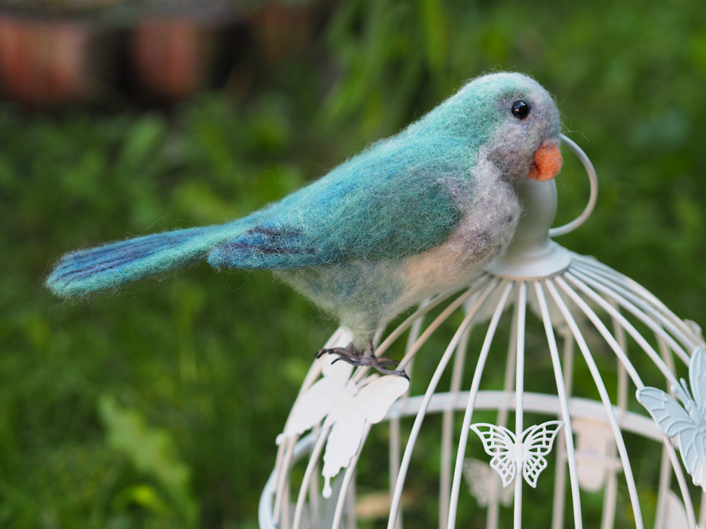 Needle felted Blue Quaker realistic parrot, faux taxidermy parrot, Monk parakeet