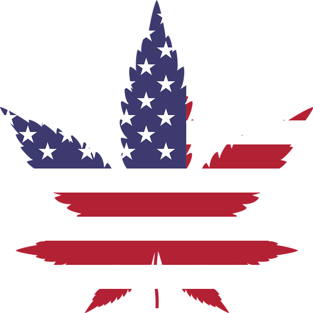 Hemp is Back In America