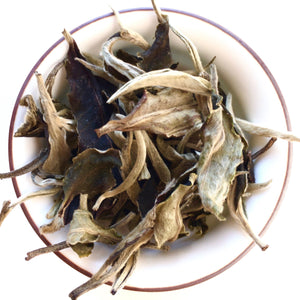 Yunnan_yue_guang_bai_moonlight_white_tea