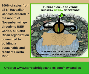 Puerto Rico is Not for Sale - November Fundraiser